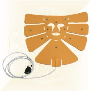 BioTransmitter Kopf Sonnengelb